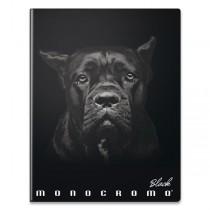 Školní sešit Pigna Monocromo Black A4, čistý, 40 listů, mix motivů