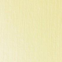 Papír na vizitky - 185g/m2, chámois, ražba 203, 10 listů, A4